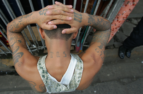 MS-13 gang member arrested in El Salvador. Photo: Luis Sinco/Los Angeles Times